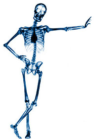 Manual Handling Skeleton